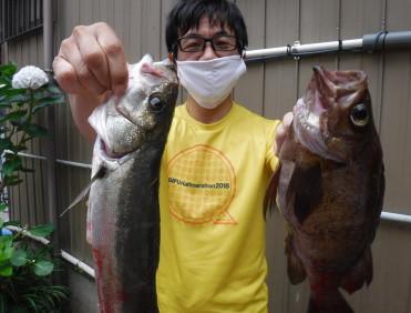 奥村釣船の2021年6月11日(金)3枚目の写真