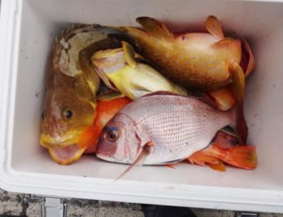 丸銀釣りセンターの2021年6月12日(土)5枚目の写真