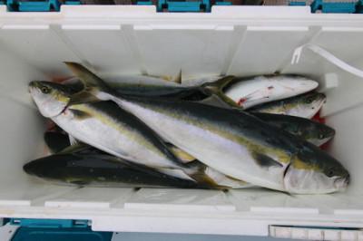西岡遊漁の2021年6月12日(土)3枚目の写真