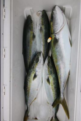 西岡遊漁の2021年6月15日(火)4枚目の写真