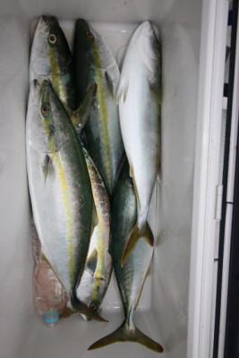 西岡遊漁の2021年6月15日(火)5枚目の写真