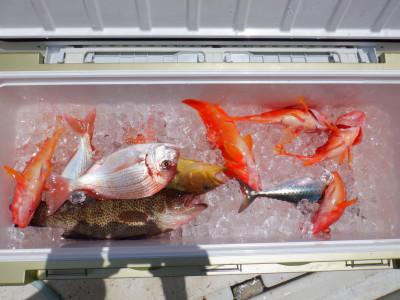 オーシャン串本の2021年6月21日(月)1枚目の写真