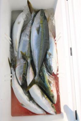 西岡遊漁の2021年6月23日(水)5枚目の写真