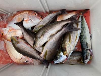 釣り船 黒潮丸の2021年6月26日(土)2枚目の写真