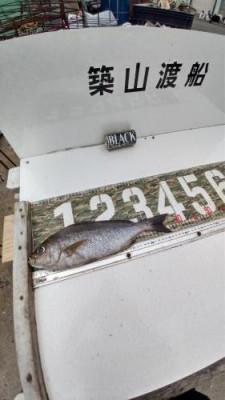 築山渡船の2021年6月26日(土)3枚目の写真
