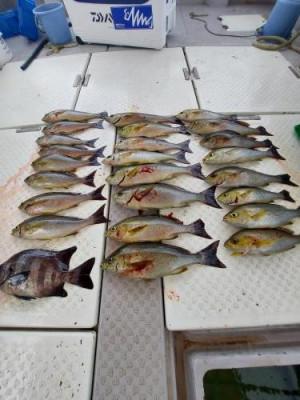 別府・亀川:海王丸の2021年7月4日(日)1枚目の写真