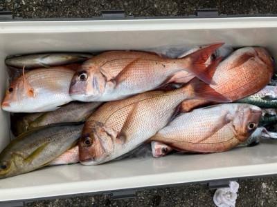 釣り船 黒潮丸の2021年7月7日(水)2枚目の写真