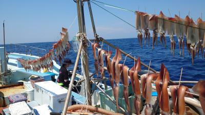 釣り船 秀進丸の2021年7月11日(日)1枚目の写真