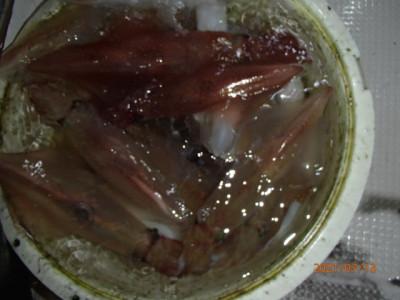 秀吉丸の2021年7月13日(火)4枚目の写真