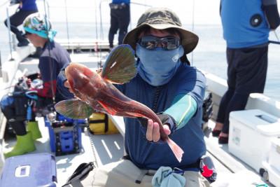 松島シーネットの2021年7月18日(日)2枚目の写真