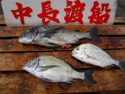 中長渡船の2021年7月23日(金)3枚目の写真