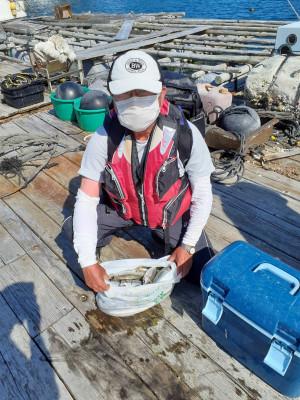 安乗釣センターの2021年7月24日(土)2枚目の写真