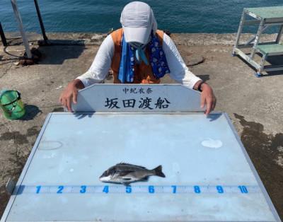 坂田渡船の2021年7月20日(火)2枚目の写真
