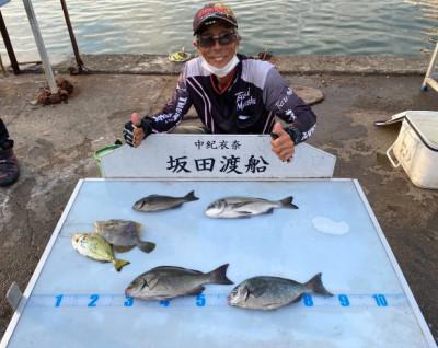 坂田渡船の2021年7月22日(木)3枚目の写真
