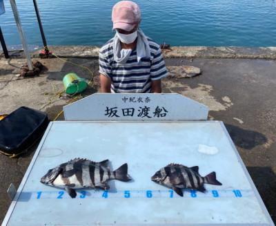 坂田渡船の2021年7月23日(金)2枚目の写真