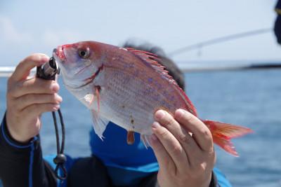松島シーネットの2021年7月25日(日)4枚目の写真