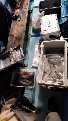 紀丸の2021年7月25日(日)3枚目の写真