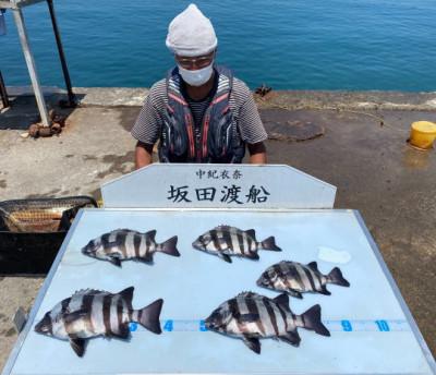 坂田渡船の2021年7月29日(木)1枚目の写真
