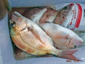 第一大漁丸の2021年8月21日(土)3枚目の写真