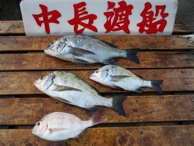 中長渡船の2021年8月27日(金)3枚目の写真