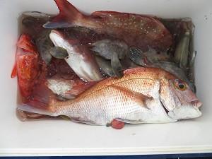 竹三丸の2021年9月1日(水)2枚目の写真