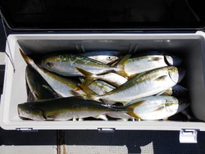 西岡遊漁の2021年8月29日(日)3枚目の写真