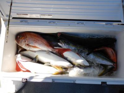 西岡遊漁の2021年8月29日(日)4枚目の写真