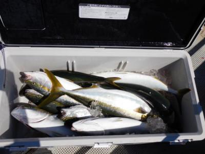 西岡遊漁の2021年8月29日(日)5枚目の写真