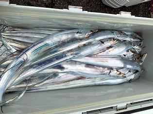 橋安丸の2021年9月4日(土)2枚目の写真