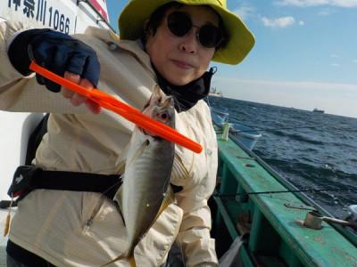 打木屋釣船店の2021年9月7日(火)1枚目の写真