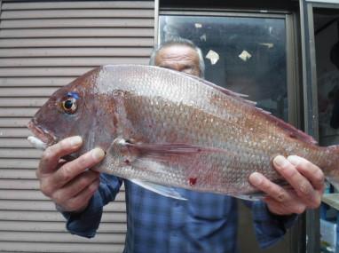 奥村釣船の2021年9月8日(水)2枚目の写真