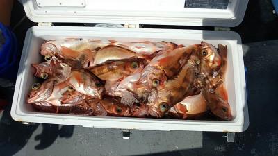 遊漁船ビックボーイの2021年9月10日(金)1枚目の写真