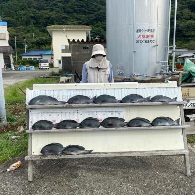 大島フィッシングの2021年9月13日(月)1枚目の写真