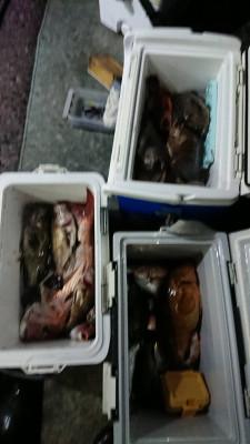 秀丸の2021年9月14日(火)1枚目の写真