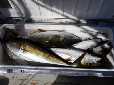 西岡遊漁の2021年9月6日(月)5枚目の写真