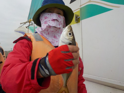 打木屋釣船店の2021年9月14日(火)2枚目の写真