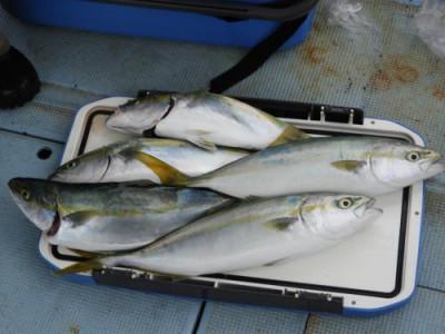 釣具の海友の2021年9月13日(月)4枚目の写真