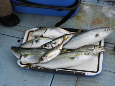 釣具の海友の2021年9月13日(月)5枚目の写真