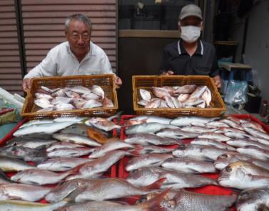 奥村釣船の2021年9月14日(火)3枚目の写真