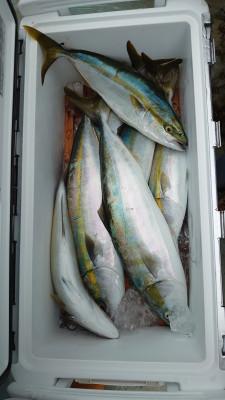 釣り船 秀進丸の2021年9月19日(日)2枚目の写真