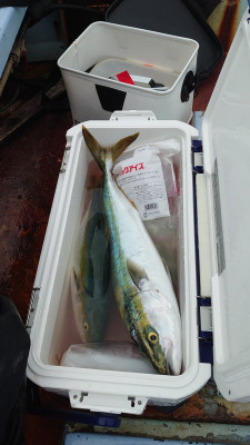 釣り船 秀進丸の2021年9月19日(日)3枚目の写真