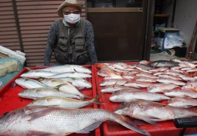 奥村釣船の2021年9月19日(日)5枚目の写真
