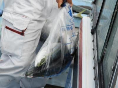 釣具の海友の2021年9月21日(火)2枚目の写真