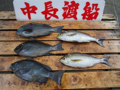 中長渡船の2021年9月22日(水)2枚目の写真