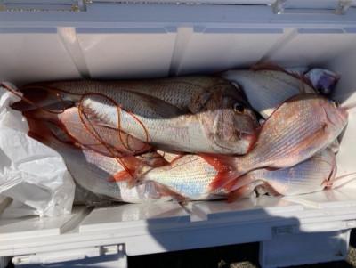 釣り船 黒潮丸の2021年9月23日(木)4枚目の写真