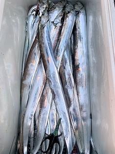 橋安丸の2021年9月24日(金)3枚目の写真