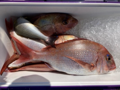 釣り船 黒潮丸の2021年9月25日(土)3枚目の写真