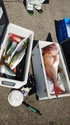 釣り船 秀進丸の2021年9月27日(月)5枚目の写真