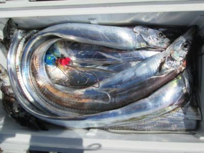 絢美丸の2021年9月29日(水)4枚目の写真