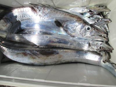 絢美丸の2021年9月29日(水)5枚目の写真